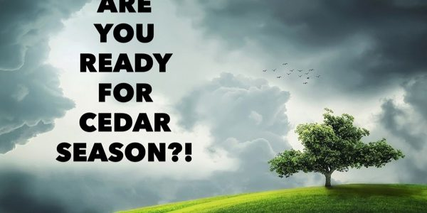 Are you ready for cedar season?